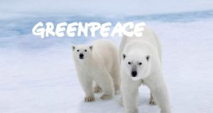 SAVE-THE-ARCTIC-WOW-FREE300X300