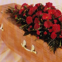 free-funeral-plan-quote