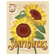 free-sunflower-seeds-pack