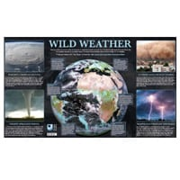 free-wild-weather-posters